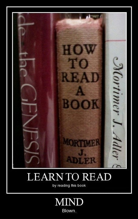 reading,learning,book,funny