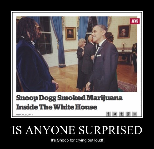 obvious wtf funny snoop dogg