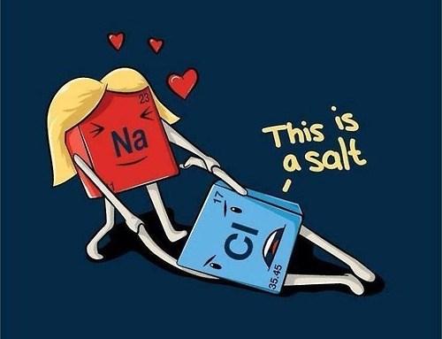 salt puns sodium chloride funny - 8271431680