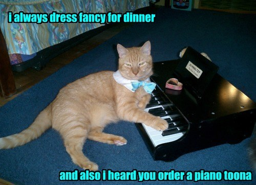 i always dress fancy for dinner and also i heard you order a piano toona