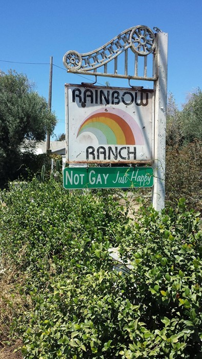 rainbow ranch gay - 8271467776