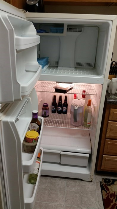 refrigerators,beer,bachelors