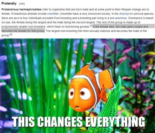 pixar finding nemo protandry - 8271564032