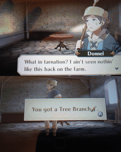 donnel,fire emblem,fire emblem awakening,video game logic