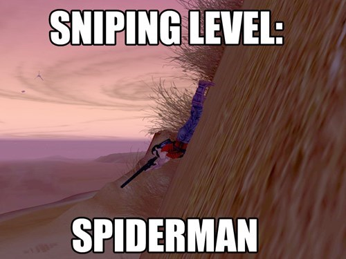 star wars galaxies,video game logic,sniping,MMO