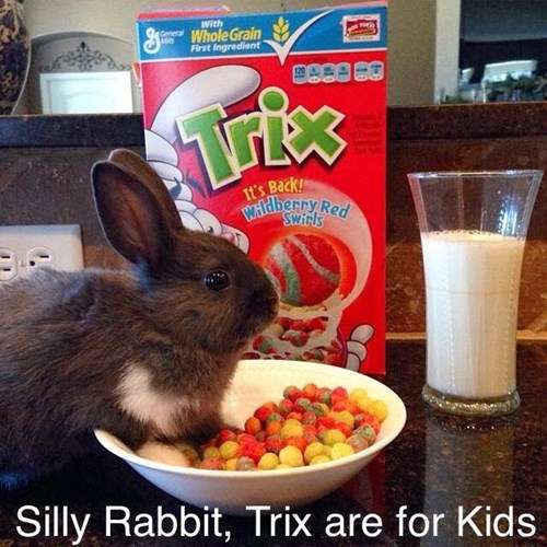 puns,funny,cereal,rabbits
