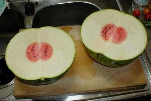 watermelon fruit - 8271609856