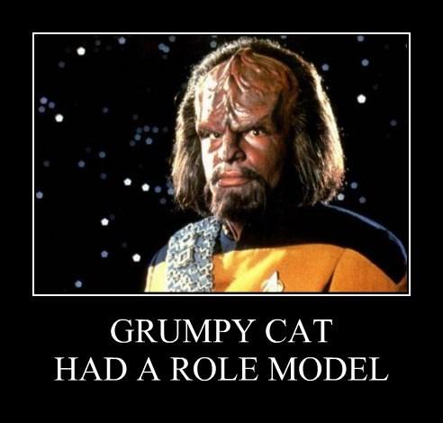 GRUMPY CAT HAD A ROLE MODEL