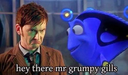 10th doctor finding nemo - 8272638464