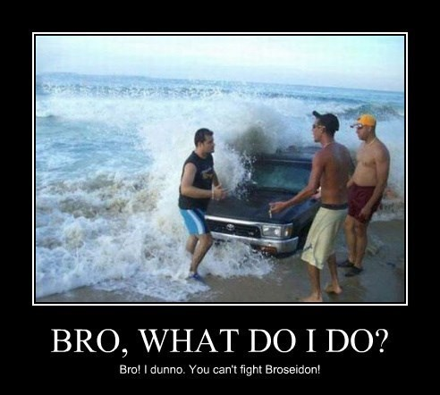bros wtf broseidon cars idiots funny - 8272647936