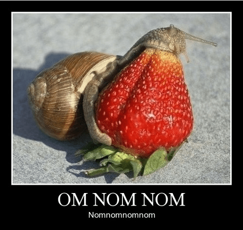 mouth strawberry snail funny - 8272649472