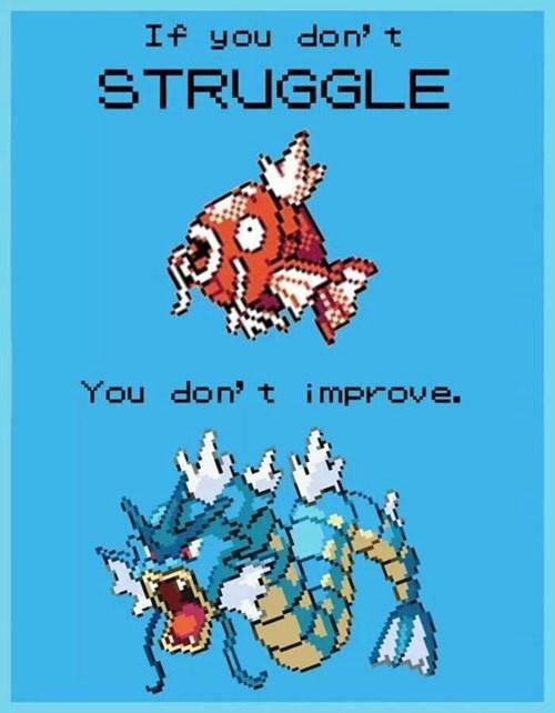 gyarados,Pokémon,magikarp