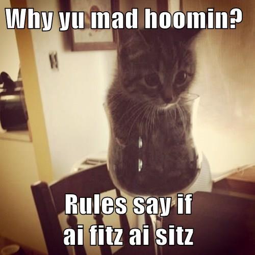 kitten if i fits i sits Cats - 8272890112