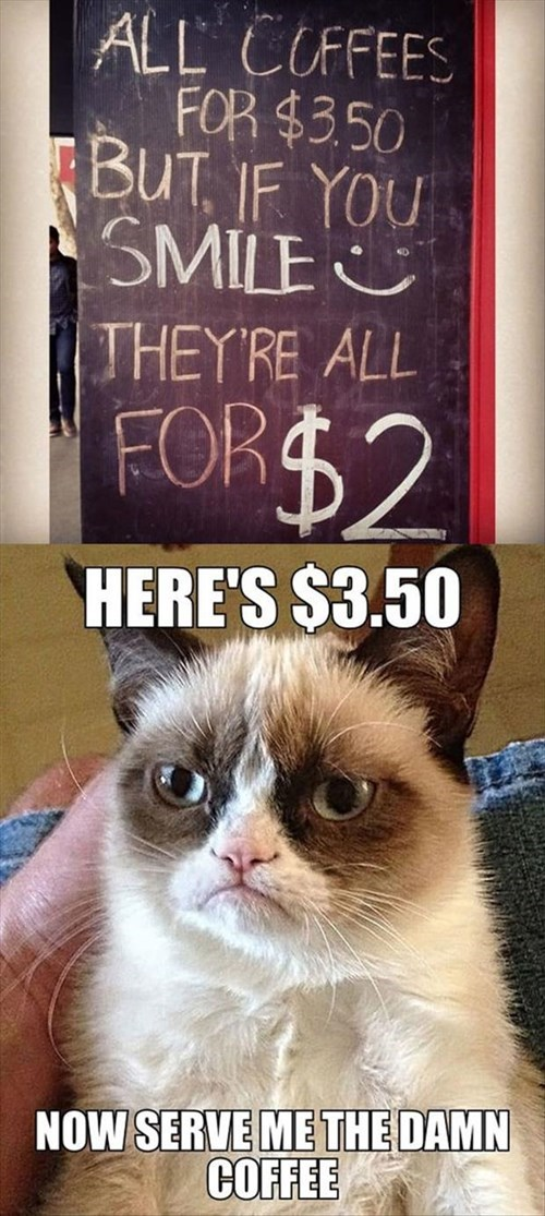 Grumpy Cat signs coffee funny - 8273908992