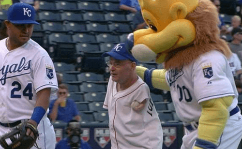 baseball 50 cent gifs first pitch sports MLB tom willis - 8274793984