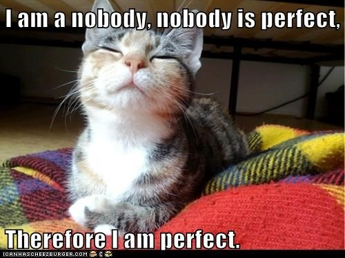 I am a nobody, nobody is perfect, Therefore I am perfect ...