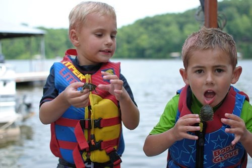 kids parenting turtle - 8275088896