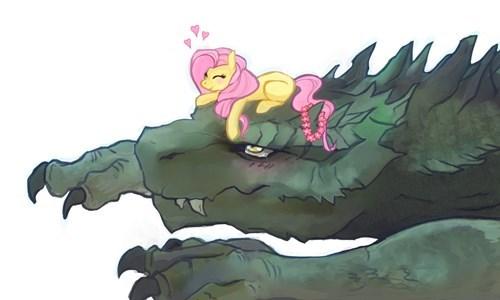 fluttershy dragon Fan Art - 8275114496