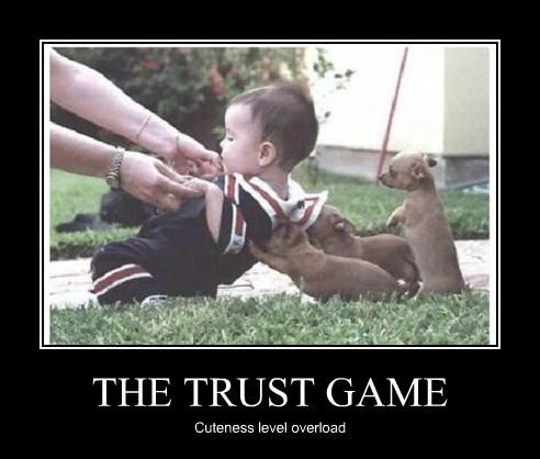 puppies cute trust - 8276488448
