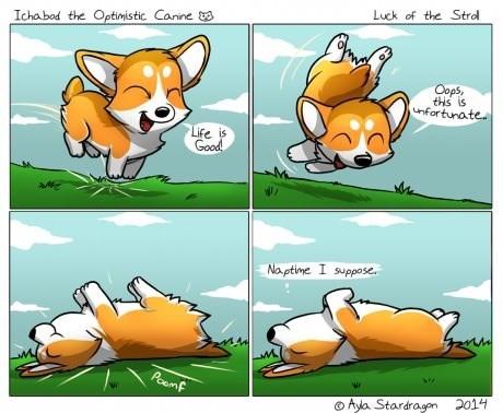 dogs optimism corgis web comics - 8277508608