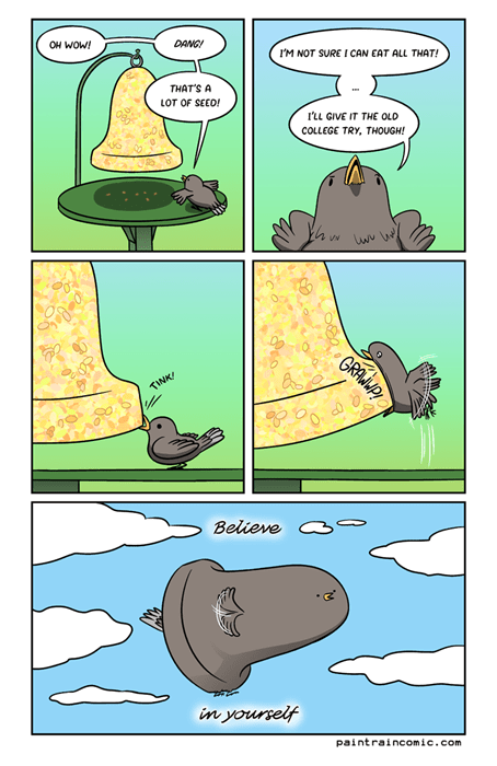 birdseed,birds,belief,web comics