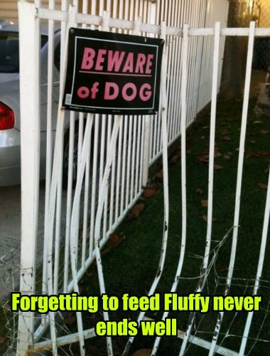 Forgetting to feed Fluffy never ends well