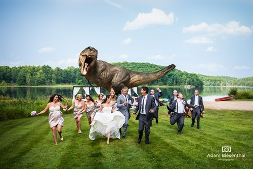 jeff goldblum wedding Photo jurassic park