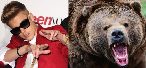 A Justin Bieber Ringtone Saved a Man From Being Attacked by a Bear
