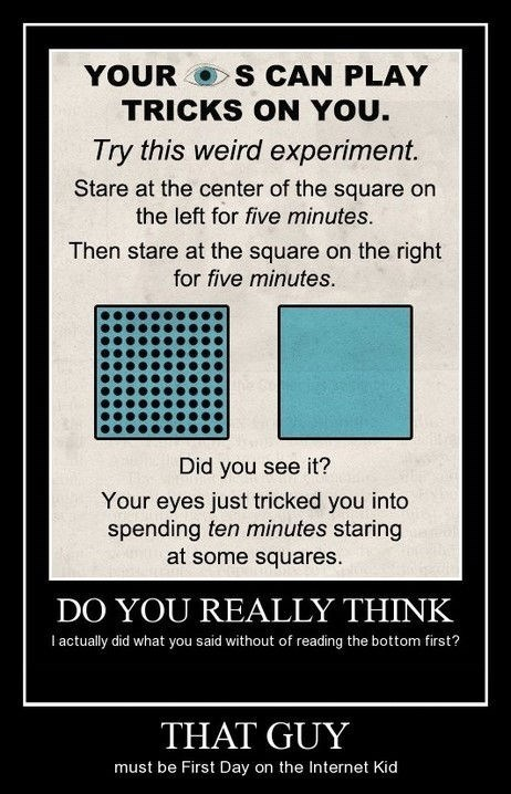 the internets idiots optical illusion funny - 8278587136