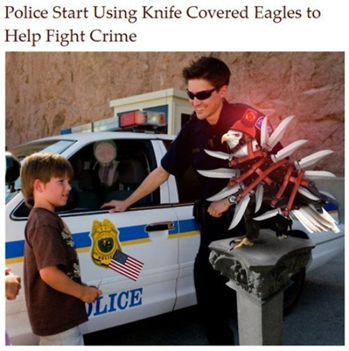 wtf knives eagles funny police - 8278717440