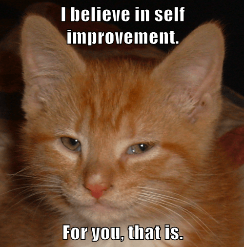 I believe in self improvement. For you, that is. - Lolcats - lol | cat memes  | funny cats | funny cat pictures with words on them | funny pictures | lol  cat memes | lol cats