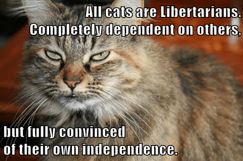 pic of cat with text about libertarians