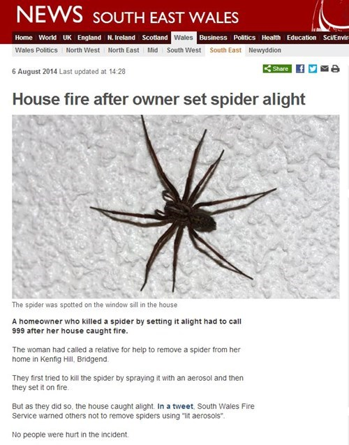 spiders,news,fire,Kill It With Fire,Probably bad News