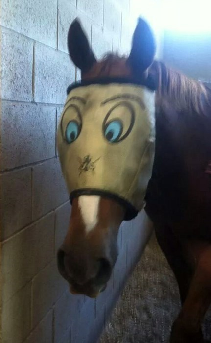 poorly dressed,mask,horse mask,horse