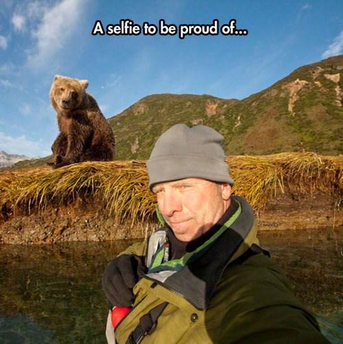 bears,selfie,stupid