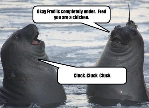 Cheezburger Image 8280905216