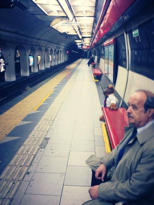monday thru friday,commute,Alf,Subway