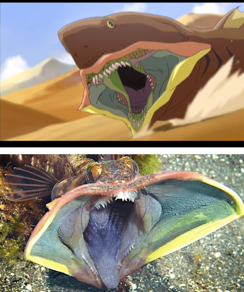 the last avatar cartoon anime animation sarcastic fringehead legend of korra monster sand irl creature fish large mouth teeth shark