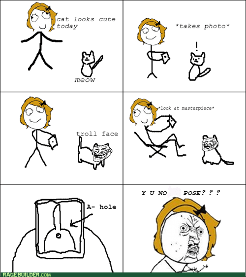 Y U NO,trollface,pets,taking pictures,Cats