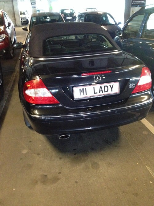 single cars license plate funny dating - 8283930880