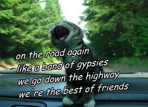 on the road again like a band of gypsies we go down the highway we're the best of friends