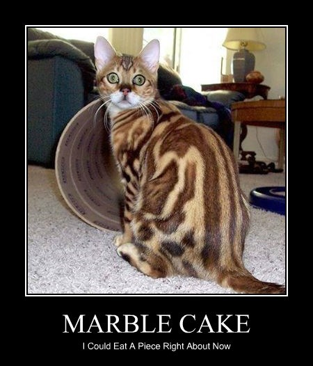 MARBLE CAKE I Could Eat A Piece Right About Now
