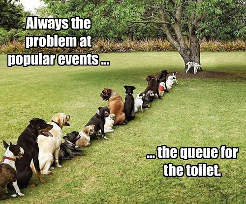dogs popular events toilet queue captions - 8284427520