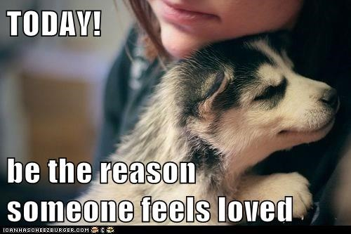 dogs feels loved reason caption today - 8284498176