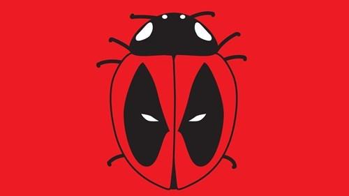 deadpool ladybug - 8284585472