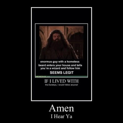Harry Potter dursleys Hagrid funny - 8284605440