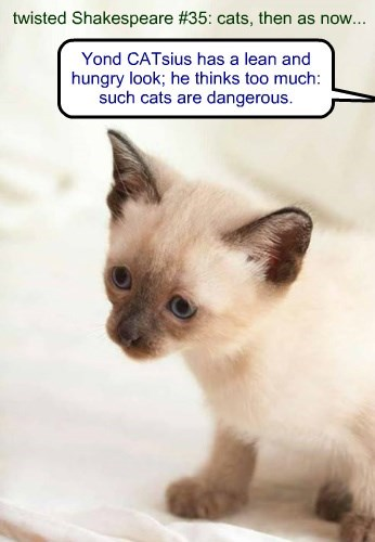 twisted Shakespeare #35: cats, then as now...