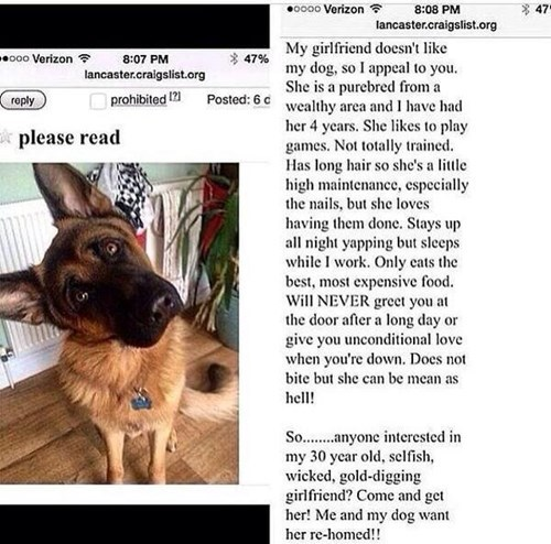 Screen grab of a Craigslist post of a woman giving away her best friend because she want her to give away the dog.