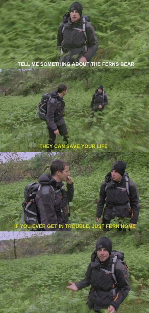 bear grylls jokes corny this guy ben stiller - 8284816896