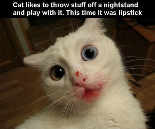 creepy Cats - 8284834560
